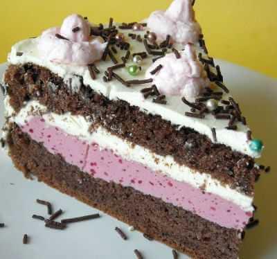 Torta sa višnjama i slatkom pavlakom