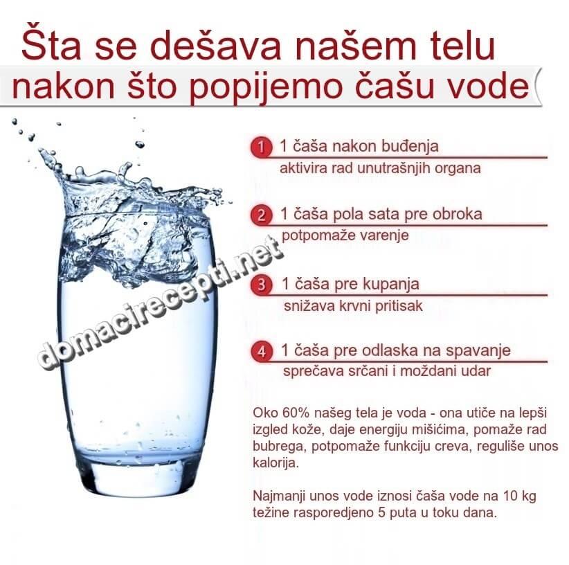 sta se desava nakon sto popijemo casu vode